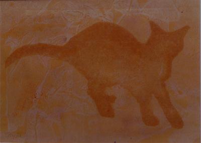 kucing gua
