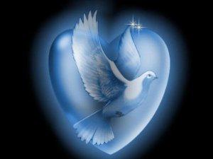merpati lambang perdamaian